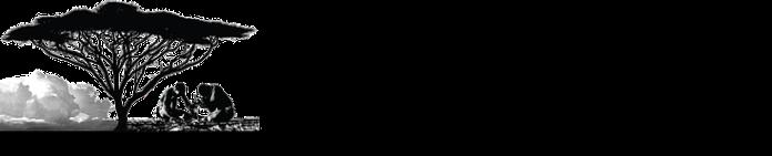 70ce02_bcd530a2956441f8ab0c7c0b5ab162a9_mv2